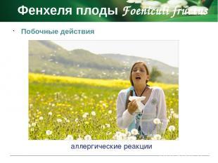 Фармакологическое действие Фиалки трава Violae herba отхаркивающее и противовосп
