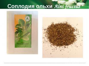 Соплодия ольхи Alni fructus Способ применения и дозы 2 фильтр-пакета помещают в