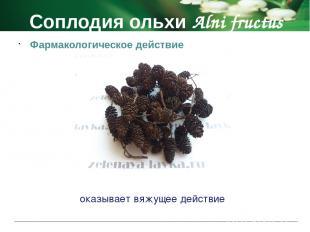 Соплодия ольхи Alni fructus Побочные действия аллергические реакции