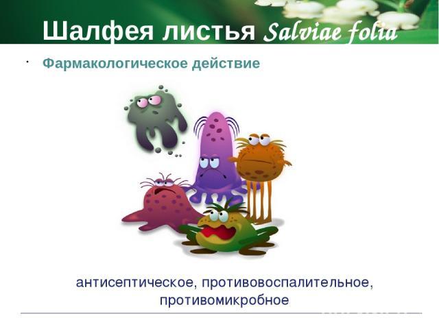 Шалфея листья Salviae folia Противопоказания беременность период лактации детский возраст до 5 лет