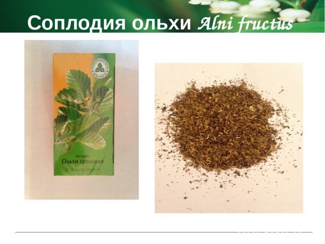 Соплодия ольхи Alni fructus Способ применения и дозы 2 фильтр-пакета помещают в стеклянную посуду, заливают кипятком, накрывают крышкой и настаивают 30 минут