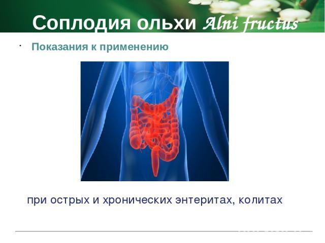 Брусники листья Vitis-idaeae folia Фармакологическое действие диуретическое противомикробные и противовоспалительное