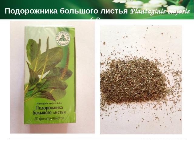 Показания к применению Мяты перечной листья Menthae piperitae foli спазмы гладкой мускулатуры ЖКТ тошнота и рвота