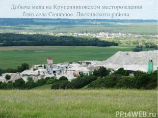Добыча мела на Крупенниковском месторождении близ села Селявное Лискинского райо
