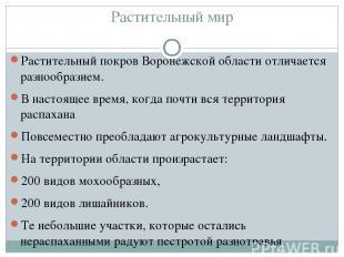 Растительный мир Растительный покров Воронежской области отличается разнообразие