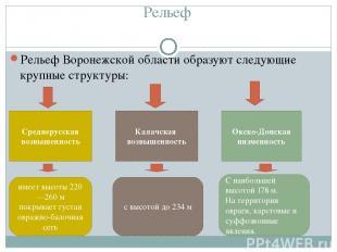 Рельеф Рельеф Воронежской области образуют следующие крупные структуры: Среднер