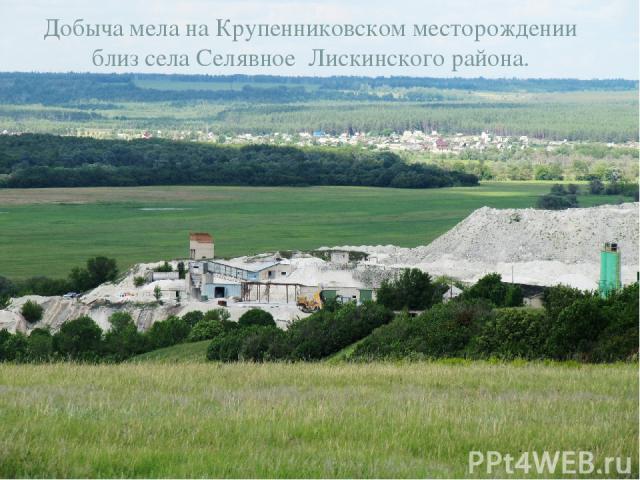 Добыча мела на Крупенниковском месторождении близ села Селявное Лискинского района.