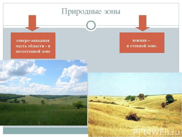 Природные зоны северо-западная часть области - в лесостепной зоне южная – в степной зоне.