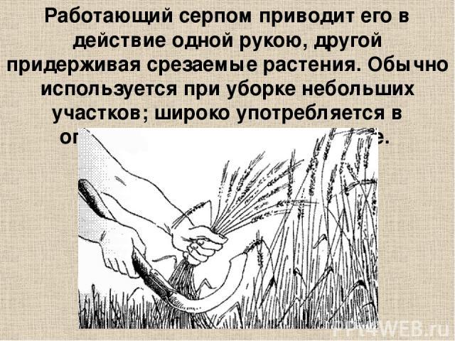 Работающий серпом приводит его в действие одной рукою, другой придерживая срезаемые растения. Обычно используется при уборке небольших участков; широко употребляется в огородничестве и цветоводстве.