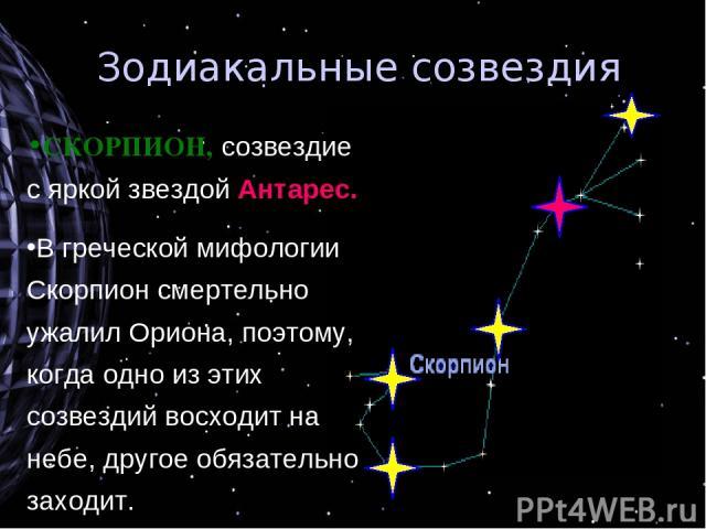 Зодиакальные созвездия СКОРПИОН, созвездие с яркой звездой Антарес. В греческой мифологии Скорпион смертельно ужалил Ориона, поэтому, когда одно из этих созвездий восходит на небе, другое обязательно заходит.