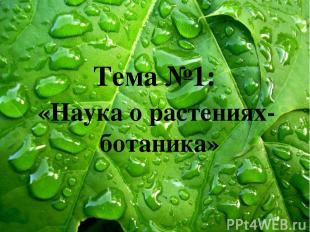 «Наука о растениях- ботаника» Тема №1: