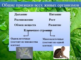 Общие признаки всех живых организмов Дыхание Питание Размножение Рост Обмен веще