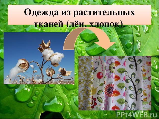 Одежда из растительных тканей (лён, хлопок).
