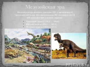 Мезозойская эра Мезозойская эра началась примерно 250, а закончилась 65 миллионо
