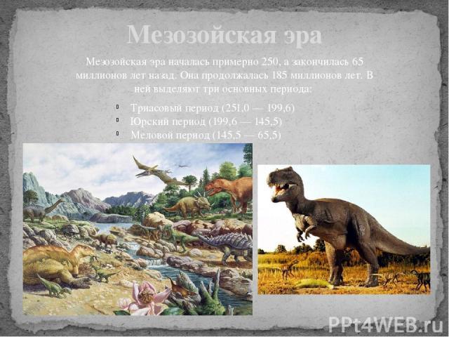 Мезозойская эра Мезозойская эра началась примерно 250, а закончилась 65 миллионов лет назад. Она продолжалась 185 миллионов лет. В ней выделяют три основных периода: Триасовый период (251,0 — 199,6) Юрский период (199,6 — 145,5) Меловой период (145,…