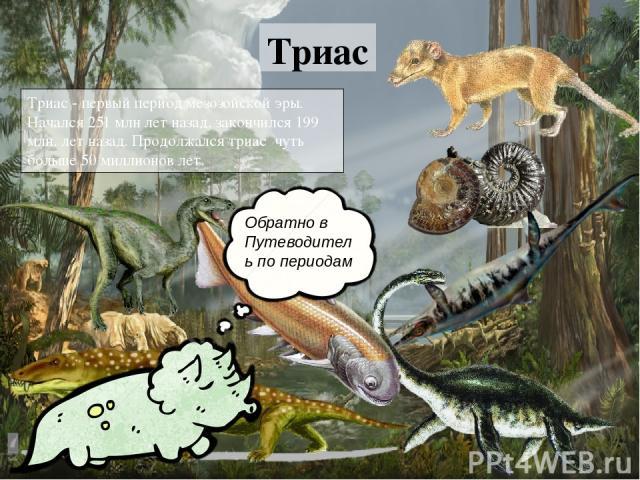 Триас Триас - первый период мезозойской эры. Начался 251 млн лет назад, закончился 199 млн. лет назад. Продолжался триас чуть больше 50 миллионов лет. Обратно в Путеводитель по периодам Триас Триас - первый период мезозойской эры. Начался 251 млн л…