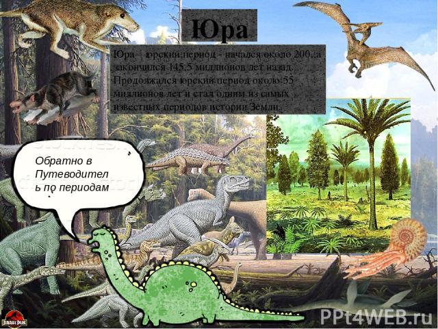 Обратно в Путеводитель по периодам МЕЛ Мел – меловой период – последний период Мезозойской эры, начался 145,5 миллионов лет назад и закончился 65,5 миллионов лет назад. Продолжался он около 80 миллионов лет. В меловом периоде появились покрытосемен…