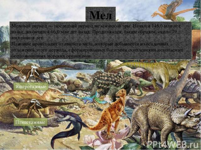 Караурус Метопозавр Амфибии Ветлугазавр