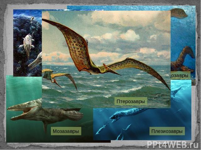 Плезиозавр Мозазавры Лепидозавры Плезиозавры Птерозавры