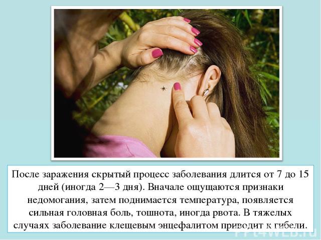 После заражения скрытый процесс заболевания длится от 7 до 15 дней (иногда 2—3 дня). Вначале ощущаются признаки недомогания, затем поднимается температура, появляется сильная головная боль, тошнота, иногда рвота. В тяжелых случаях заболевание клещев…