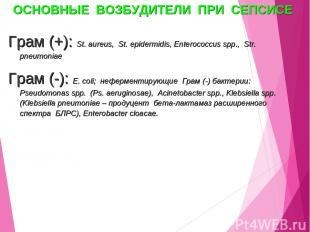 ОСНОВНЫЕ ВОЗБУДИТЕЛИ ПРИ СЕПСИСЕ Грам (+): St. aureus, St. epidermidis, Enteroco