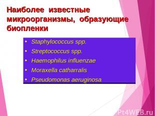 Staphylococcus spp. Streptococcus spp. Haemophilus influenzae Мoraxella catharra