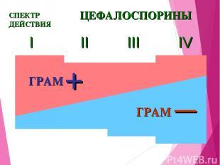 I II III IV ЦЕФАЛОСПОРИНЫ СПЕКТР ДЕЙСТВИЯ ГРАМ — + ГРАМ