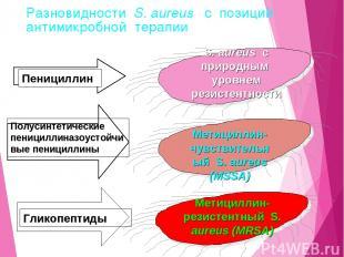 Разновидности S. aureus с позиций антимикробной терапии
