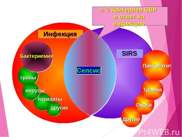 SIRS Панкреатит Травма Ожоги Другие паразиты другие грибы вирусы Бактериемия Инфекция Сепсис 2 критериев СВР в ответ на инфекцию