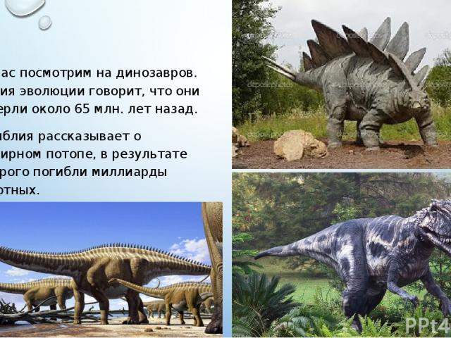 Сейчас посмотрим на динозавров. Теория эволюции говорит, что они вымерли около 65 млн. лет назад. А Библия рассказывает о всемирном потопе, в результате которого погибли миллиарды животных.