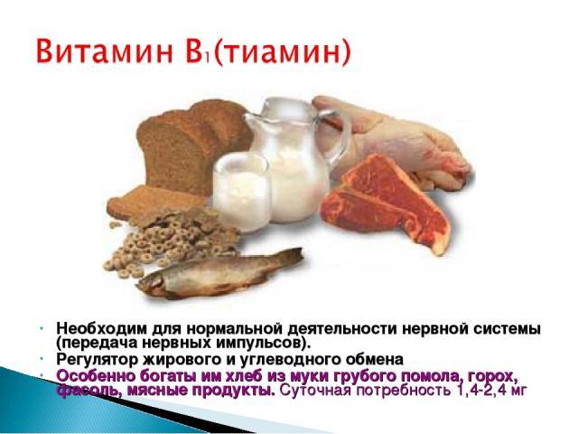 Необходим для нормальной деятельности нервной системы (передача нервных импульсов). Регулятор жирового и углеводного обмена Особенно богаты им хлеб из муки грубого помола, горох, фасоль, мясные продукты. Суточная потребность 1,4-2,4 мг