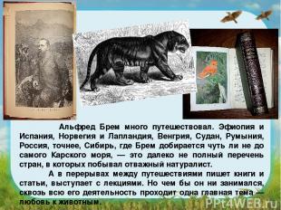 Альфред Брем много путешествовал. Эфиопия и Испания, Норвегия и Лапландия, Венгр