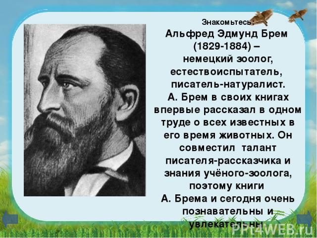 Знакомьтесь: Альфред Эдмунд Брем (1829-1884) – немецкий зоолог, естествоиспытатель, писатель-натуралист. А. Брем в своих книгах впервые рассказал в одном труде о всех известных в его время животных. Он совместил талант писателя-рассказчика и знания …