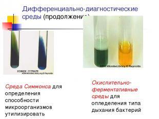 Дифференциально-диагностические среды (продолжение) Окислительно-ферментативные