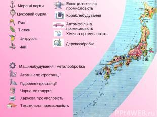 Морські порти Цукровий буряк Рис Тютюн Цитрусові Чай Машинобудування і металообр