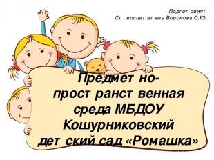 ПРС МБДОУ Кошурниковский детский сад «Ромашка» Подготовил: ст. воспитатель Ворон