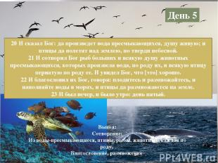 День 5 20 И сказал Бог: да произведет вода пресмыкающихся, душу живую; и птицы д
