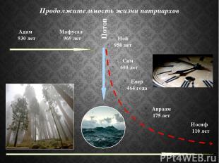 Адам 930 лет Потоп Продолжительность жизни патриархов Сим 600 лет Мафусал 969 ле