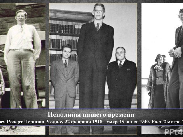 Исполины нашего времени Родился Роберт Першинг Уодлоу 22 февраля 1918 - умер 15 июля 1940. Рост 2 метра 72 см.