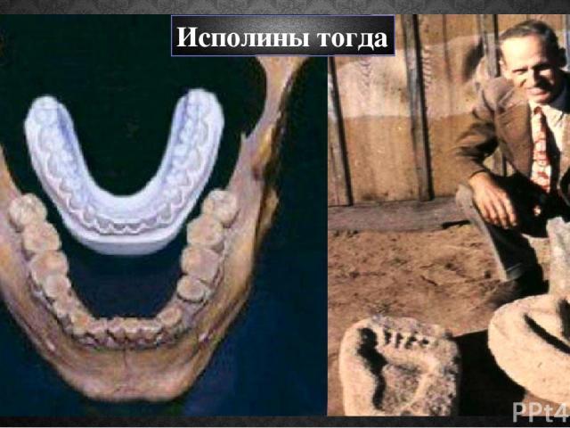Исполины тогда Скелет 2 метра 95 см был найден в каменном погребении в Бреверзвиле в 1979 году. В Неваде найден 3-х метровый скелет в русле озера Хумболт, в июне 1931 года. Легенды Гуама повествуют о гигантских предках, построивших каменное