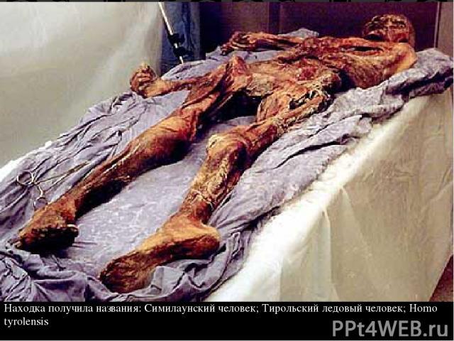 Находка получила названия: Симилаунский человек; Тирольский ледовый человек; Homo tyrolensis