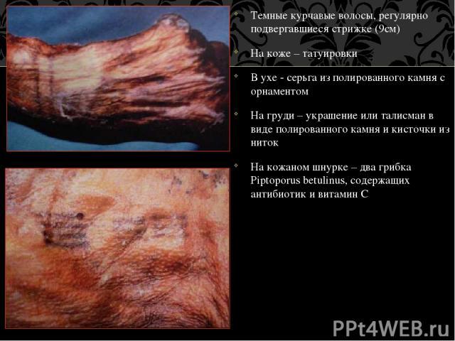 Темные курчавые волосы, регулярно подвергавшиеся стрижке (9см) На коже – татуировки В ухе - серьга из полированного камня с орнаментом На груди – украшение или талисман в виде полированного камня и кисточки из ниток На кожаном шнурке – два грибка Pi…