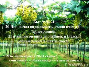 Слабость Ноя Быт.9:20-21: 20 Ной начал возделывать землю и насадил виноградник;