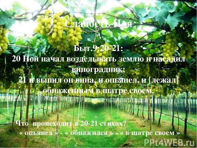 Слабость Ноя Быт.9:20-21: 20 Ной начал возделывать землю и насадил виноградник; 21 и выпил он вина, и опьянел, и [лежал] обнаженным в шатре своем. Что происходит в 20-21 стихах? « опьянел » - « обнажился » - « в шатре своем » Что происходит в 20-21 …