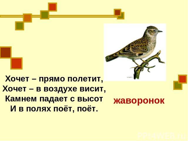 Хочет – прямо полетит, Хочет – в воздухе висит, Камнем падает с высот И в полях поёт, поёт. жаворонок