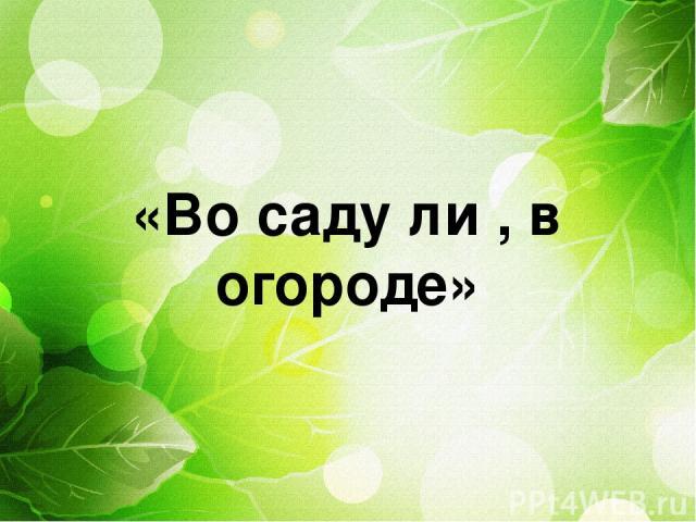 «Во саду ли , в огороде»