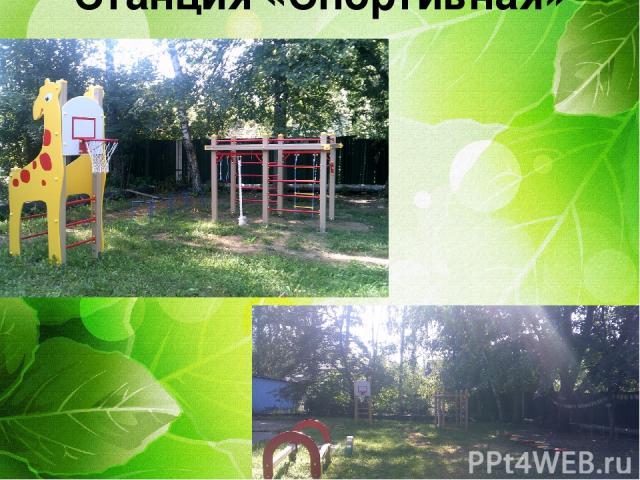 Центр здоровья Станция «Спортивная»