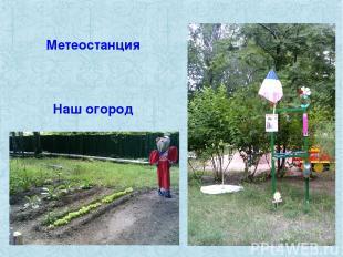 Метеостанция Наш огород