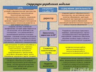директор Заместитель директора по ВР Социально-психологическая служба Педагоги-в