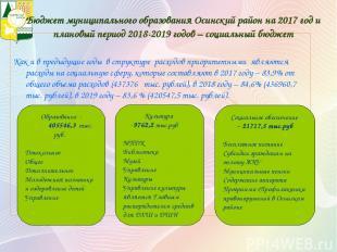 Бюджет муниципального образования Осинский район на 2017 год и плановый период 2